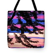 Find The Bird? Tote Bag