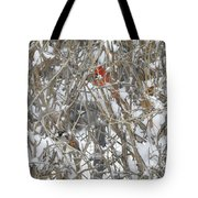 Find The Birds Tote Bag