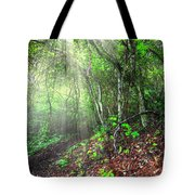 Finding Inspiration Tote Bag