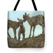 Finding My Own Way Tote Bag