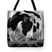 Fine Art Black And White-189 Tote Bag