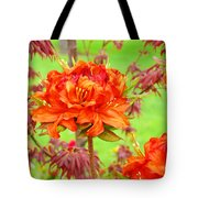 Fine Art Floral Art Prints Canvas Orange Rhodies Baslee Troutman Tote Bag