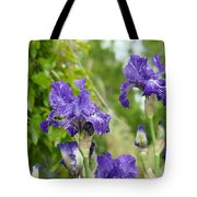Fine Art Floral Prints Purple Iris Flowers Canvas Irises Baslee Troutman Tote Bag