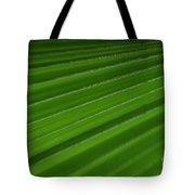 Fine Art- Tulip Tote Bag