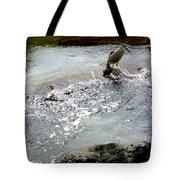Fine Feathered Fisherman Tote Bag
