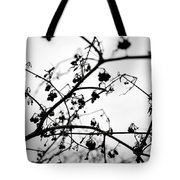 Fineart-nature-4 Tote Bag