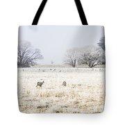 Fingal Winter Farmyard Tote Bag