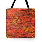 Fire 2 Tote Bag