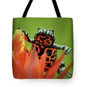 Fire-bellied Toad Tote Bag