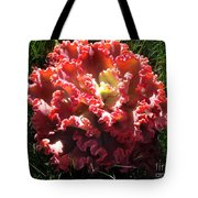 Fire Color Succulent. Curly Plant, Exotic Tote Bag