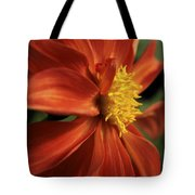 Fire Dahlia Tote Bag