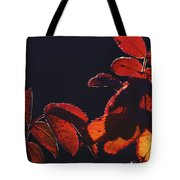 Fire In Hands  Tote Bag