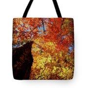 Fall Fire Tote Bag