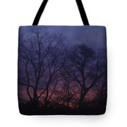 Fire Morning Tote Bag
