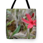 Fire Pink Tote Bag