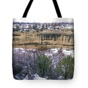 Fire Temple And New Fire House Ruins Tote Bag