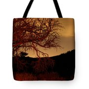 Fire Tree Tote Bag