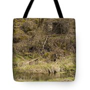 Fireplace Remains 1 A Tote Bag