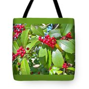Firethorn Tree Tote Bag