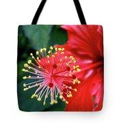 Fireworks - Hibiscus Tote Bag