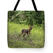 First Baby Fawn Of The Year Tote Bag