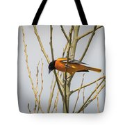 First Baltimore Oriole Of The Year  Tote Bag