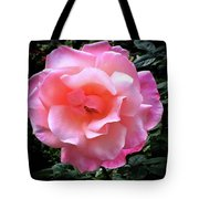 First Blush Of The Season Tote Bag