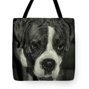 First Day Home Tote Bag