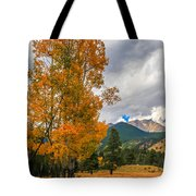 First Fall Colors In Rocky Mountain National Park Tote Bag