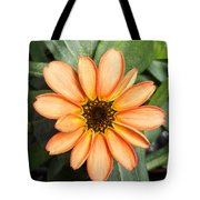 First Flower Grown Aboard Iss Tote Bag