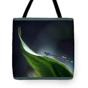 First Light Arrival Tote Bag