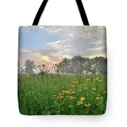 First Light In Glacial Park Tote Bag