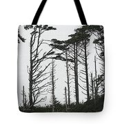 First Line Trees Along The Pacific Ocean Tote Bag