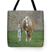 First Outing Tote Bag