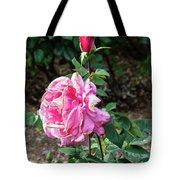 First Prize Rose Hybrid Tea Tote Bag