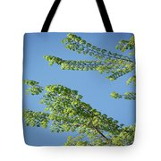 First Sign Of Spring I Tote Bag