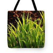 First Signs Of Life Tote Bag