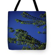 First Signs Of Spring Iv Tote Bag