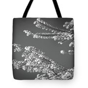 First Signs Of Spring V Tote Bag