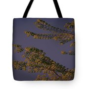 First Signs Of Spring Vi Tote Bag