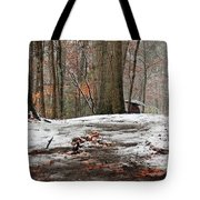 First Snowfall - A Walk In The Woods Tote Bag