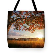 First Touch Of Autumn Tote Bag
