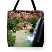 First View Of Havasu Falls Tote Bag