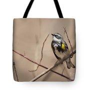 First Warbler Back Yellow Rumped Warbler Tote Bag