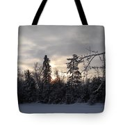 First Winter Sunrise Of 2011 Tote Bag
