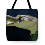 Fish 36 Tote Bag