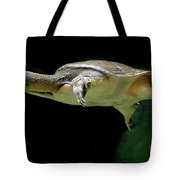 Fish 37 Tote Bag