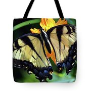 Fish Eye Butterfly Tote Bag