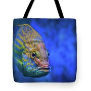 Fish Frown Story Tote Bag