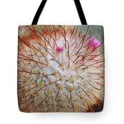 Fish Hook Barrel Cactus Tote Bag